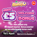 Play Online Bingo at mFortune Bingo